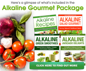The Alkaline Cook